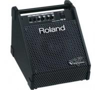 Монитор барабанщика ROLAND PM-10