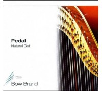 BB17 Bow Brand