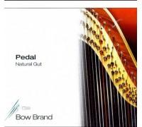 """BB50 Bow Brand"""