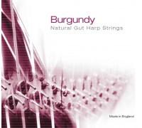 BG19 Burgundy