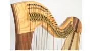 Аккорды струн для арфы